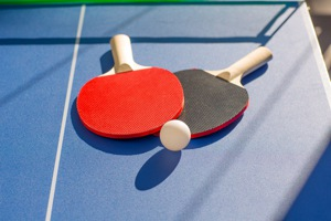 What Is The Difference Between Ping Pong And Table Tennis