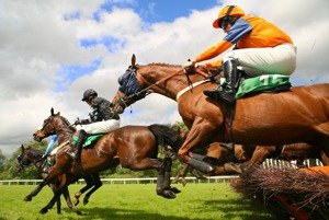 horse betting guidelines